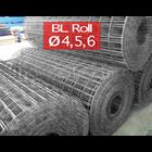 Wiremesh M4 5 6 Roll panjang 54 mtr 1