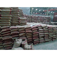 Semen Conch 40kg Harga Murah