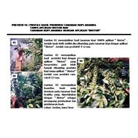 Beli Pupuk Organik Cair Bioton 4