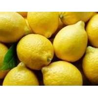 Lemon Import 1