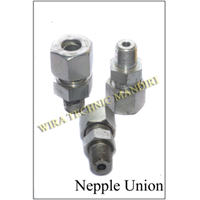 Nepel Union 1