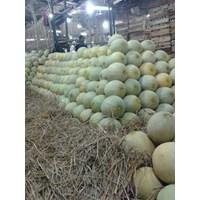 Buah Segar Melon 1