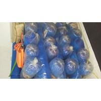 Beli polynet biru 4