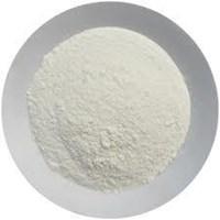 Garlic Natural Powder  1