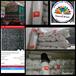 Paranet Shading Net plastik pertanian