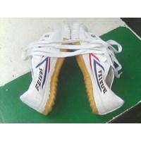 Sepatu Wushu