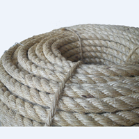 Manila Rope 1