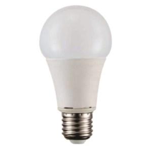 LED Bulb DC