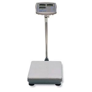 Counting Floor Scale