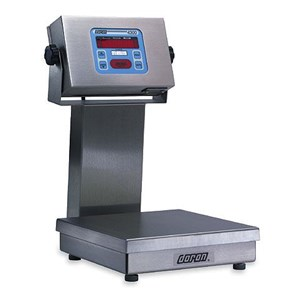 Ss Checkweighing Scale