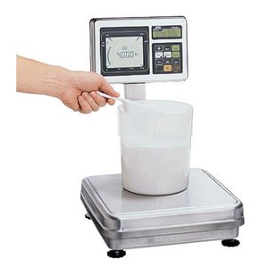 Checkweighing Washdown Scale