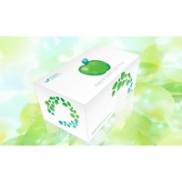 Jual APPLE STEM CELLS PLUS
