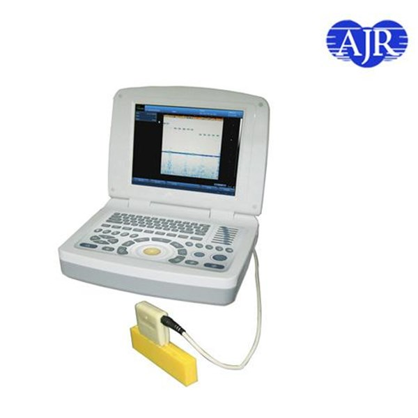 BS-2000 Ultrasonic Flaw Detector