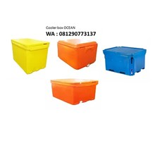 Ocean Cooler Box