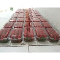 Beli Strawberry Fresh 4
