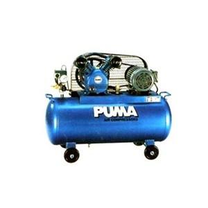 Filter Puma