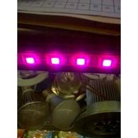 Jual Lampu Led Strip 5050 2