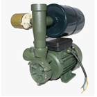 Pompa Air Dabking DB 125 1