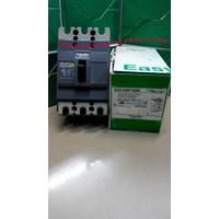 Mold Case Circuit Breaker MCCB  EZC100F3060 Schneider