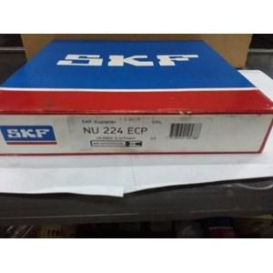 Bearing  SKF NJ 224 ECP