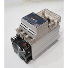 Digital Power Regulator TPS3-100 Fotek  1
