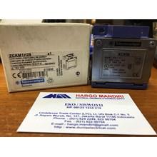 Limit Switches Schneider ZCKM1H29