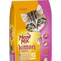 Dari makanan kucing 0