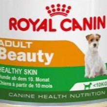 Adult Beauty Mini Dog Can