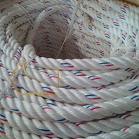 Buy PPD rope 4