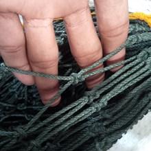 jaring ikan pe