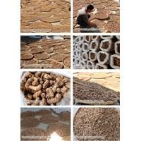 Dried Turmeric 1