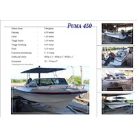 Speed Boat Puma 45