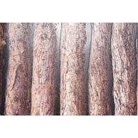 Wood Motif Wallpapers Cheap 5