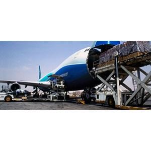 AIR FREIGHT SERVICE DOOR TO DOOR By PT  Andesco Pratama Logistik