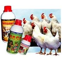 Vitamin Organik Ayam 1