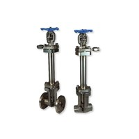 Katup Valves C Series Cryogenic Bellow Seal Globe Valve