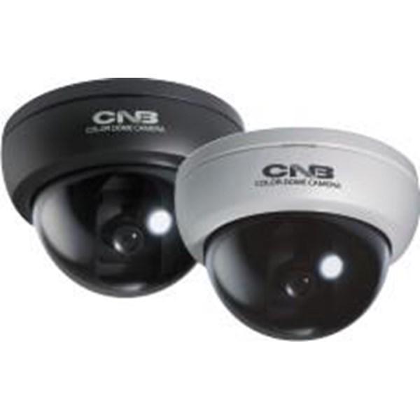 Kamera CCTV D1310N&P