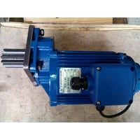 Horm Motor 0.75 Kw  For Saddle Crane Endcarriage