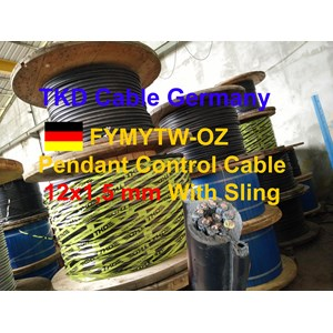12x1.5mm cable pendant control hoists with sling