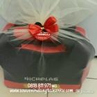 Souvenir Bag Mickey Tenteng 2