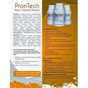 Prontech