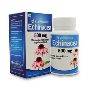 Jamu Dan Obat Alami Sidomuncul Echinacea