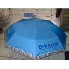 Umbrella Fold BRI 1