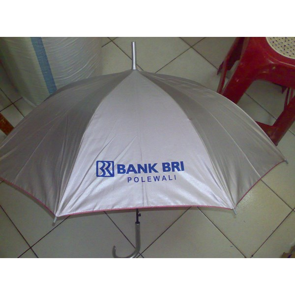 Umbrella Fold BRI
