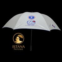 Multicolored Promotional Umbrellas