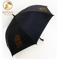 Buy promotion umbrella and raincoat 4