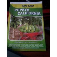 Jual Bibit Pepaya California Ipb9