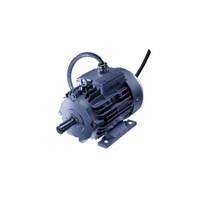 Jual Customized Motors 2