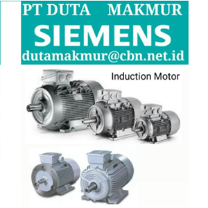 Induction Motor Siemens