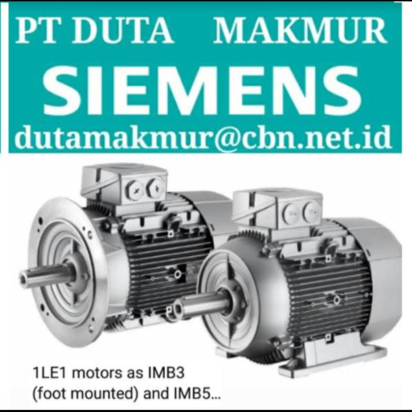 Foot Mounted Motor Siemens IMB3
